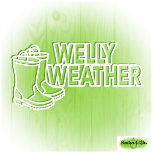 Welly Weather