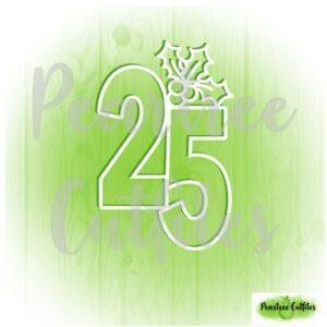 December Album 25