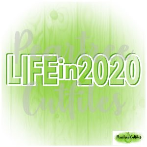 Life in 2020