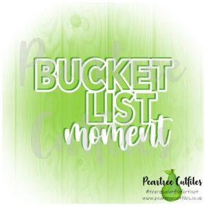 Bucket List Moment