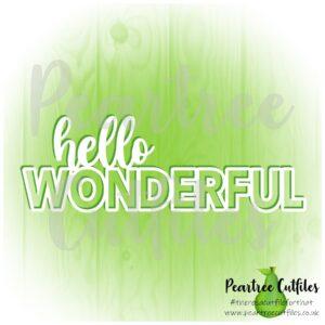 Hello Wonderful
